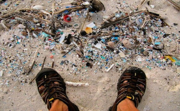 Protecting oceans from micro plastic pollution public telegraph protecting oceans from micro plastic pollution sciox Image collections