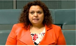 Abbott Government , Budget , Michelle Rowland, Multiculturalism