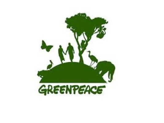 Greenpeace International staff member refused entry to India despite valid business visa
