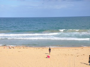 Shark Sighting Closes Beaches at Ballina