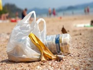 $1.3 million to reduce litter