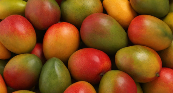 Despite recall, consumers won't face shortage of mangoes this Christmas